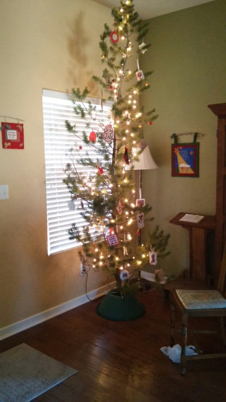 if you remember charlie browns christmas tree he picked the saddest tree in the whole lot and rescued it that was us the saviors of the sad little - Charlie Brown Christmas Tree For Sale
